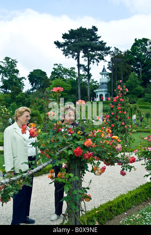 Paris France, Public Parks, Senior People Visiting Bagatelle 'Rose Garden' in Boulogne Park Looking at 'Hannibi - Stock Photo