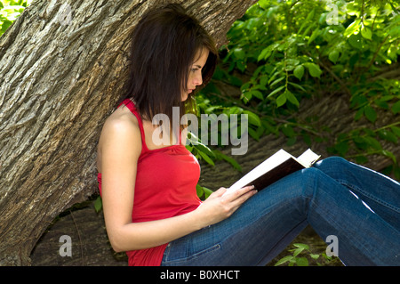 A beautiful young woman leans against a tree and reads the bible, learning verses. Oklahoma, USA. - Stock Photo