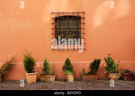 Germany, Wasserburg am Inn, Potted plants in a backyard - Stock Photo