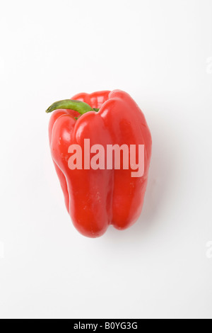 Red Bell Pepper Also used in USA to make dried ground paprika - Stock Photo