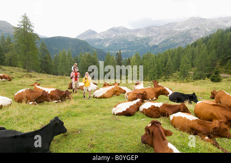 Austria, Salzburger Land, couple with son passing cattle herd - Stock Photo