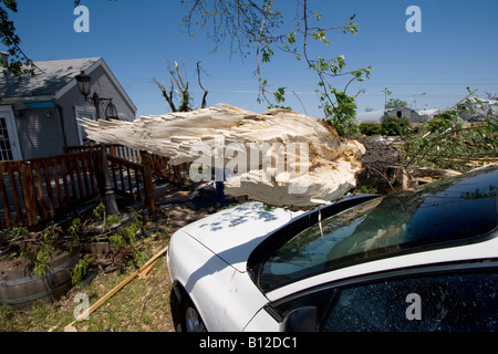 A tree fallen on a car at Bill Foster's home at 2165 East 39th Street in Kearney Nebraska May 30 2008 - Stock Photo