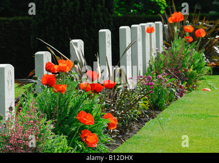 Headstones in World War One war cemetery Ramparts Cemetery also known as Lille Gate Cemetery Ypres Belgium - Stock Photo