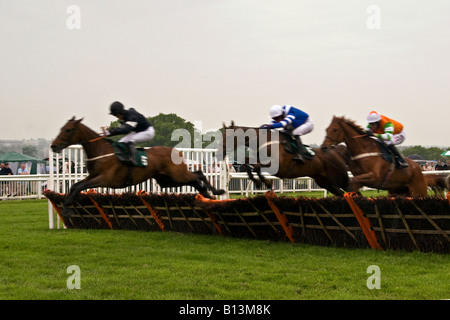 Horses and Jockey`s jumping over the hurdles during The Gold Cup Steeplechase event at Scone Palace Park Racecourse - Stock Photo