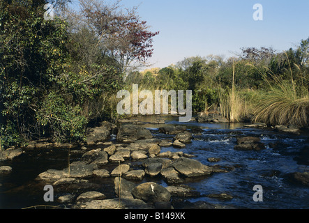 geography / travel, Namibia, landscapes, Kavango River near Pop Falls, Northern Namibia, Additional-Rights-Clearance - Stock Photo