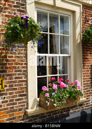A window box and hanging basket on the window of a Georgian style hotel in Richmond North Yorkshire - Stock Photo