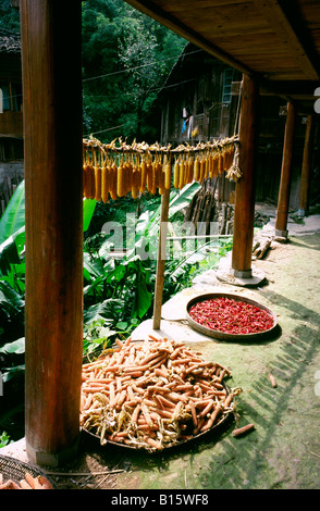 Aug 27, 2006 - Corn hanging out to dry from a house at the Yao minority village of Ping'an in China's Guangxi province. - Stock Photo