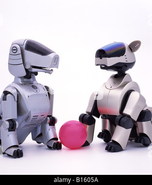 an overview of aibo a japanese artificial intelligence robot Sony is banking on the irresistible cuteness of its new robot dog to win over consumers aibo, the artificial-intelligence-powered hound, wags its tail, chases pink balls and can learn new.