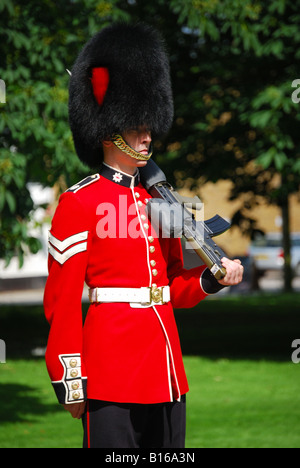 Household Cavalry parading on The Long Walk, Windsor Castle, Windsor, Berkshire, England, United Kingdom - Stock Photo
