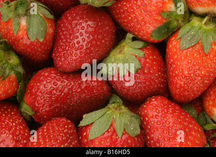 Fresh strawberries background - Stock Photo