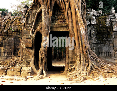 Angkor Wat Siem Reap Cambodia - Stock Photo