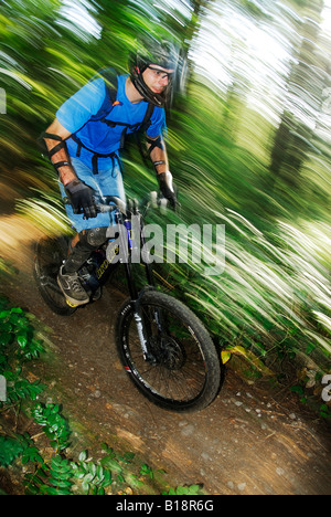 Mountain Biker rides Fisherman's Trail. Lower Seymour Conservation Reserve, Seymour Mountain, North Vancouver, British - Stock Photo