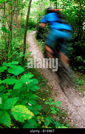 Mountain Biker rides Fisherman's Trail, Lower Seymour Conservation Reserve, Seymour Mountain, North Vancouver, British - Stock Photo