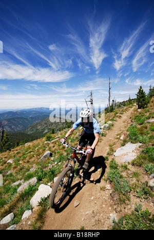 Man bikes the Seven Summits trail, Rossland, British Columbia, Canada. - Stock Photo