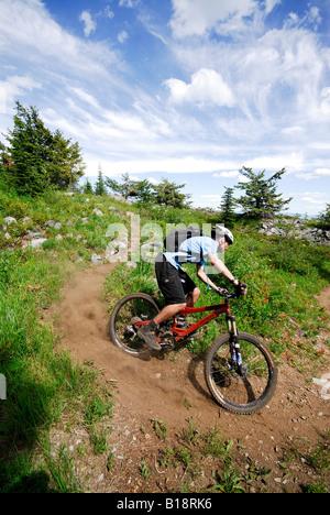 Man bikes the Seven Summits trail, Rossland, British Columbia, Canada - Stock Photo
