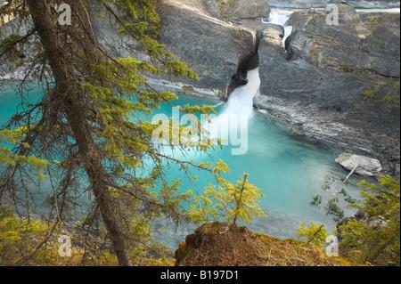 Kicking Horse River at the Natural Bridge, Yoho National Park, British Columbia, Canada - Stock Photo