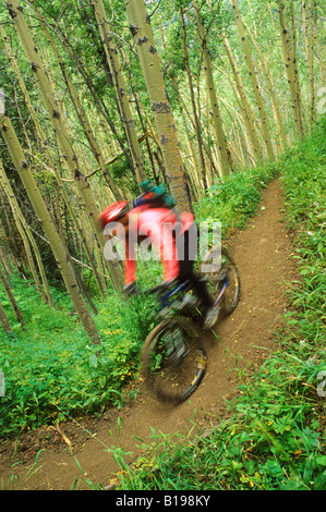 Mountain biker rides down the Gun Creek Trail from Spruce Lake, Southern Chilcotin Mountains, British Columbia, - Stock Photo