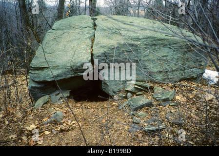 Overwintering den site of a hibernating black bear (Ursus americanus), Pennsylvania - Stock Photo