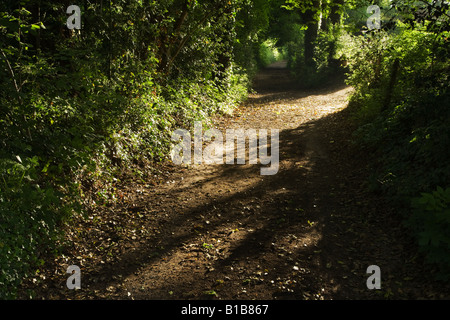 Country footpath in Chilterns countryside Buckinghamshire UK - Stock Photo