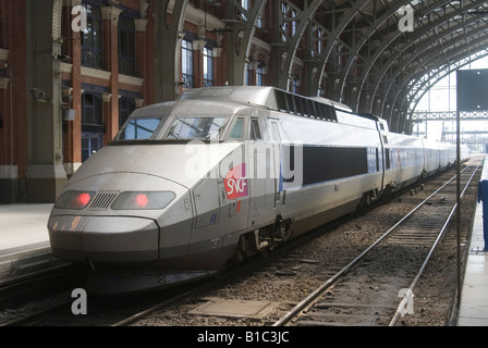 france lille europe tgv train platform crowd of passengers stock photo royalty free image. Black Bedroom Furniture Sets. Home Design Ideas