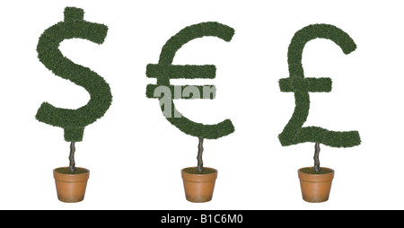 Topiary trees in shape of world currency symbols cut out on white background - Stock Photo
