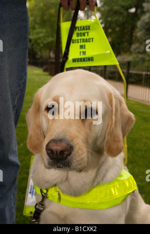 Guide Dog Training Centre Cardiff