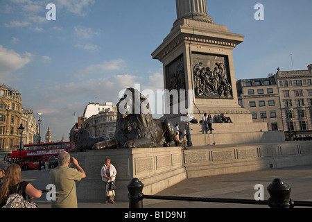 Lion statue and base of Nelson's column, Trafalgar Square, London - Stock Photo