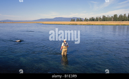 A fly fisherman casts dry flies for rainbow trout on the world famous Clark s Fork of the Snake River - Stock Photo