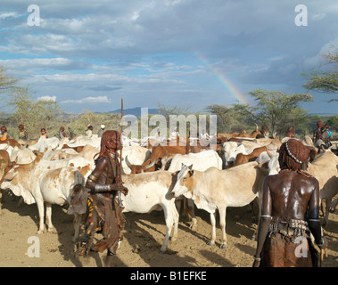 Hamar women dance around cattle at a 'Jumping of the Bull' ceremony as a rainbow gives colour to a threatening sky - Stock Photo