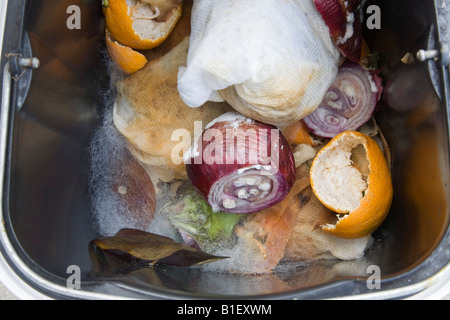 Mouldy vegetables in waste bin with fungus growing on rotten organic food - Stock Photo