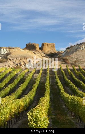 Mt Difficulty Vineyard in Autumn and Historic Gold Sluicings Bannockburn Central Otago South Island New Zealand - Stock Photo