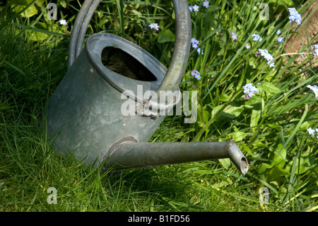 Traditional Garden Watering Can England UK United Kingdom GB Great Britain - Stock Photo