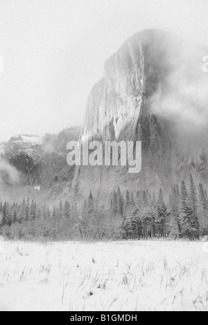 El Capitan shrouded in mist and cloud on a cold winter day. - Stock Photo