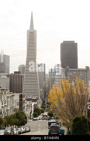 Transamerica pyramid san francisco - Stock Photo