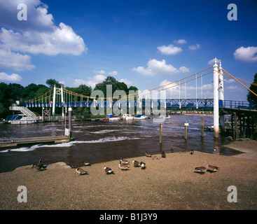 Teddington Lock suspension footbridge crossing the river Thames, London, Middlesex, England, UK. - Stock Photo