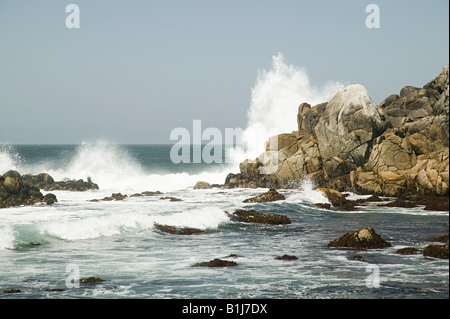 Pacific surf - Stock Photo