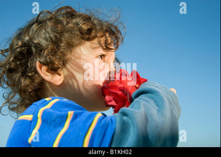 young boy smelling a red rose - Stock Photo