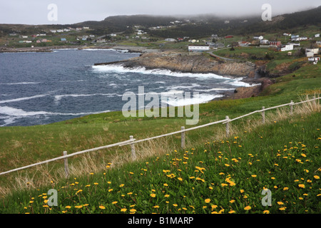 Rugged coastline at the Town of Flatrock in Northern Avalon Peninsular of Newfoundland and Labrador in Canada - Stock Photo
