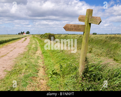 Wooden sign post indicating public footpaths and bridleways in the Marshlands, East Yorkshire, England, UK - Stock Photo
