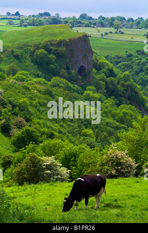 Thor's Cave in the Manifold Valley of the limestone White Peak in Staffordshire England in the Peak District with - Stock Photo