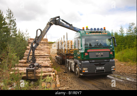 Scottish timber and commercial forestry harvesting operations in Invernesshire, Scotland uk - Stock Photo
