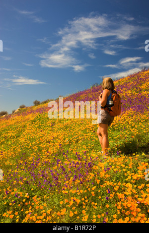 A hiker enjoying the wildflowers primarily California Poppy in the hills above Lake Hodges San Diego County California - Stock Photo