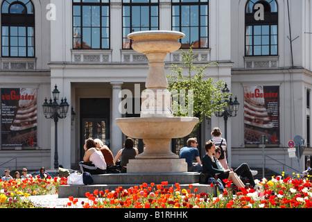 Flowering Tulips (Tulipa) at Gaertnerplatz Square in front of Gaertnerplatz Theatre, Isarvorstadt, Munich, Bavaria, - Stock Photo