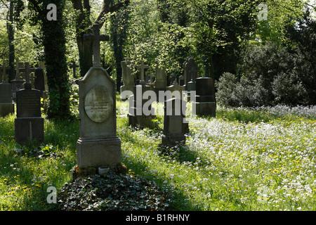 Alter Suedlicher Friedhof, Old Southern Churchyard, Isarvorstadt, Munich, Bavaria, Germany, Europe - Stock Photo