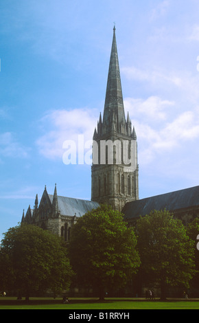 Salisbury Cathedral, Wiltshire. - Stock Photo