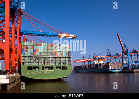 Container ships being loaded at the Eurokai container terminal, left, and Burchardkai, right, Hamburg Harbour, Germany, - Stock Photo