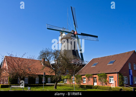 Historical windmill build in typical Dutch style showing the fantail at the back, husking mill, Esens, East Frisia, - Stock Photo