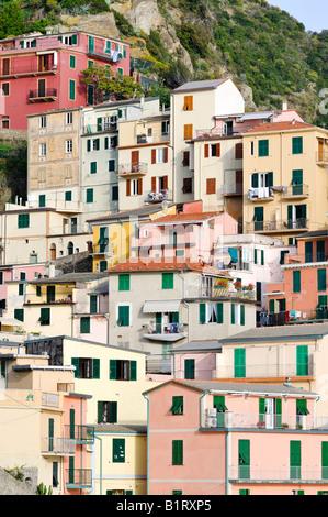 Facades of houses nestled on a mountain side in Manarola, Liguria, Cinque Terre, Italy, Europe - Stock Photo