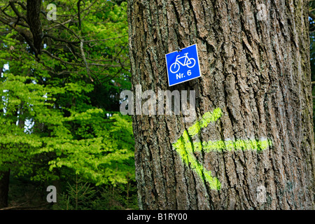 Sign for a mountain bike stretch in the forest - Stock Photo