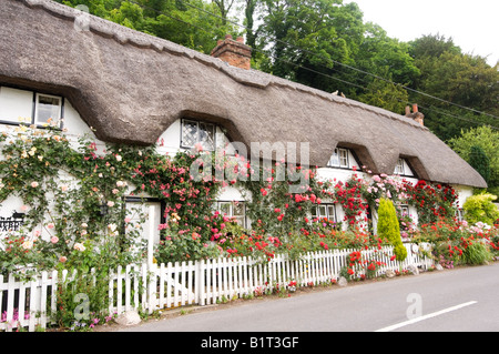 Thatched Roof Cottage Wherwell Hampshire UK - Stock Photo